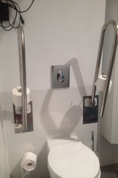 Toilet with folding wall bars